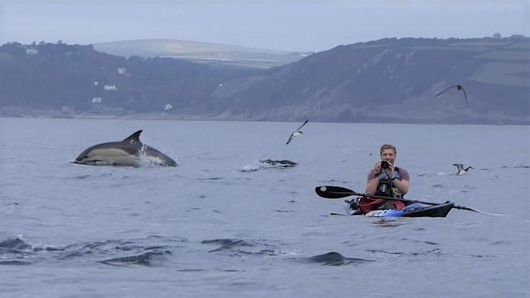 josh dolphin 7